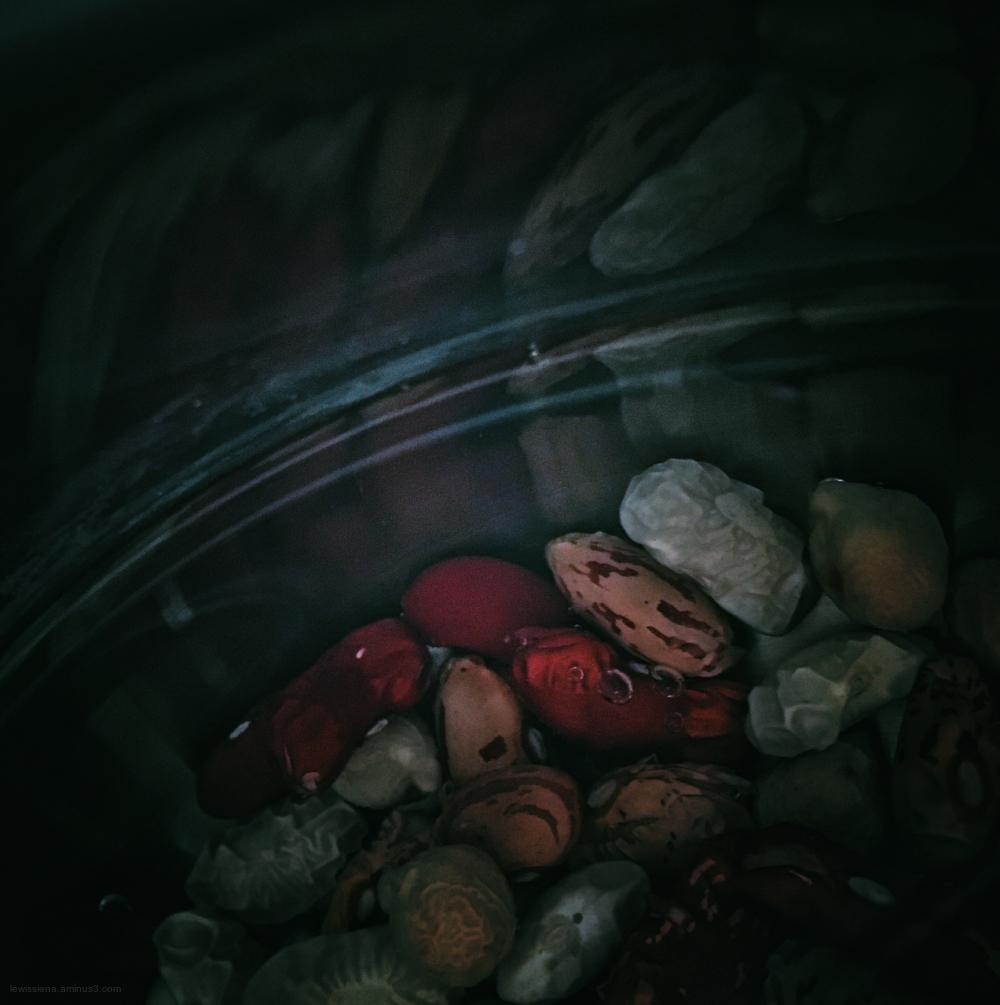 bonen water legumes