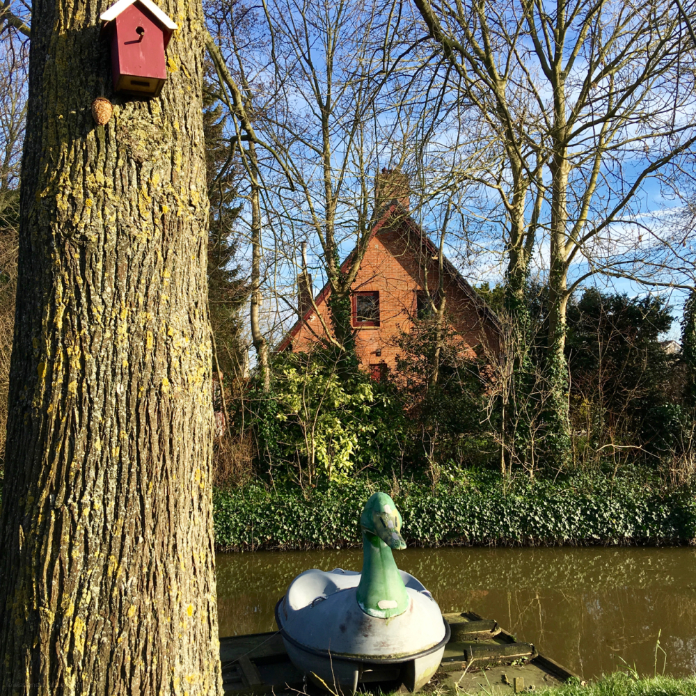 duck boot eend huisje