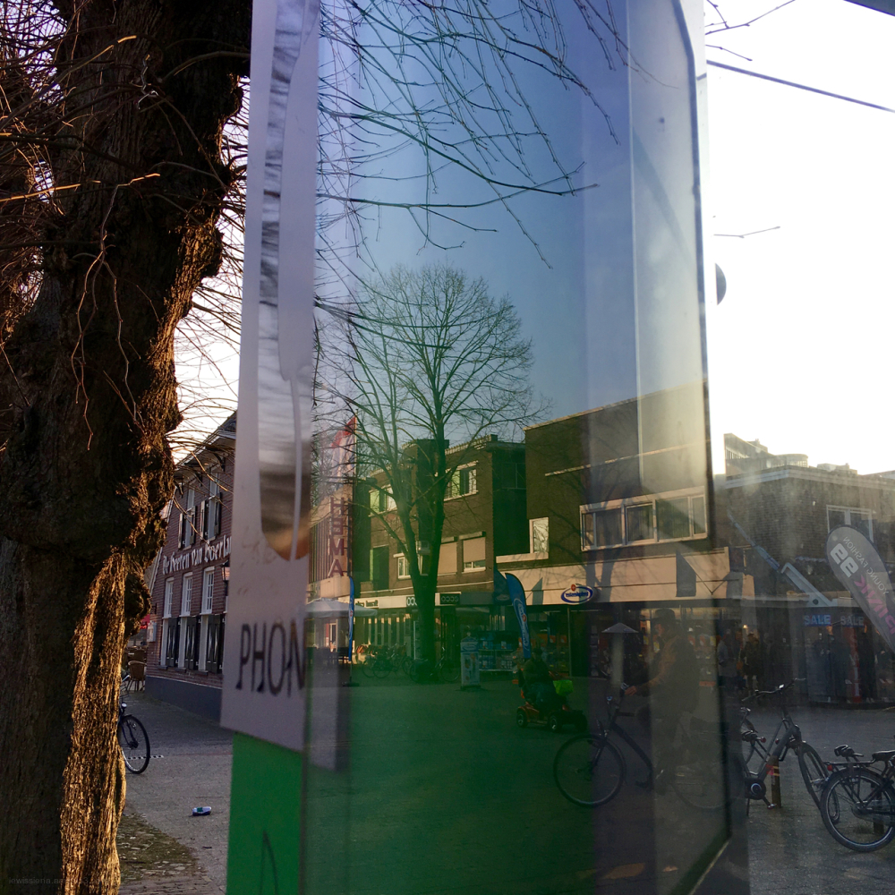 telephone booth reflections tree