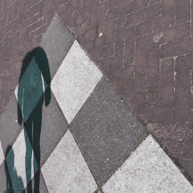 shadow schaduw