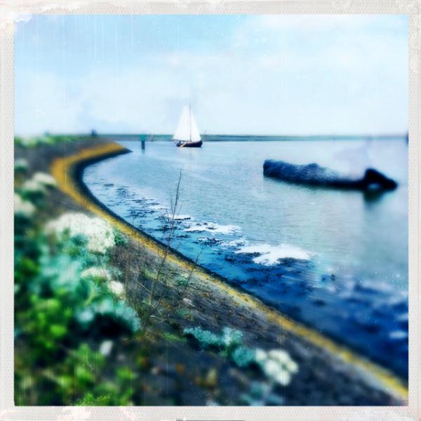 haven waddenzee zeilboot potvis fontein fountain h