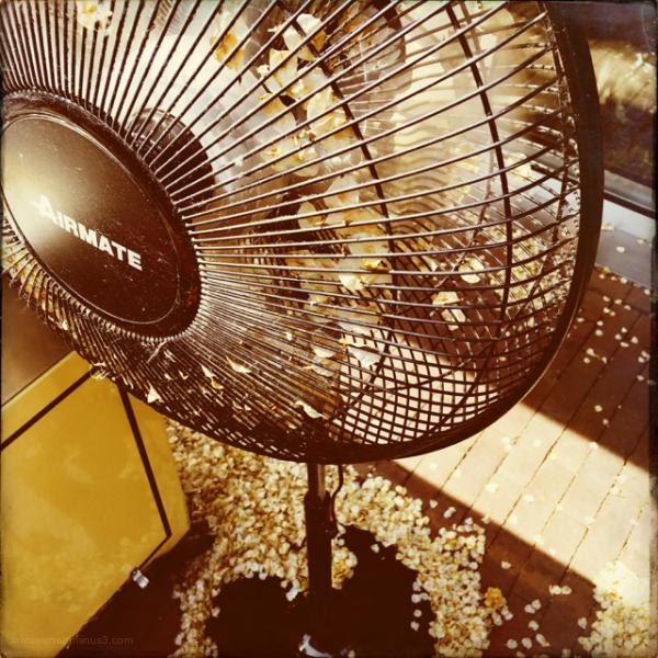 fan ventilator blossom bloesem