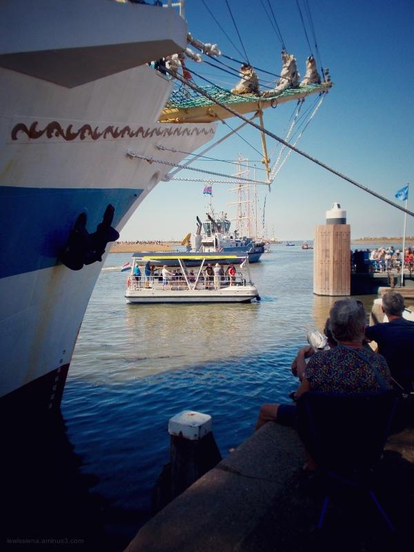 Tall ship races harlingen