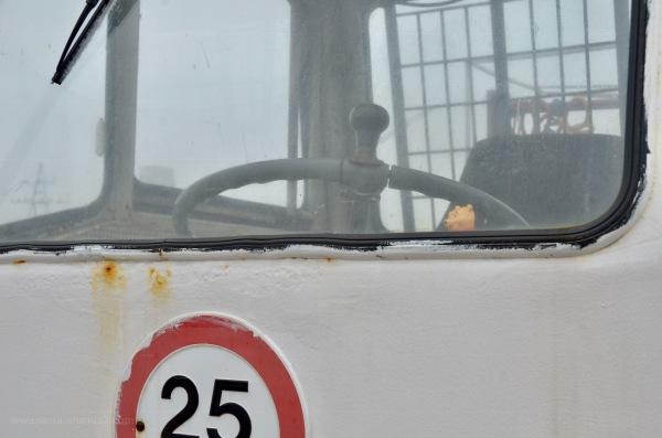 Winnie behind the Wheel