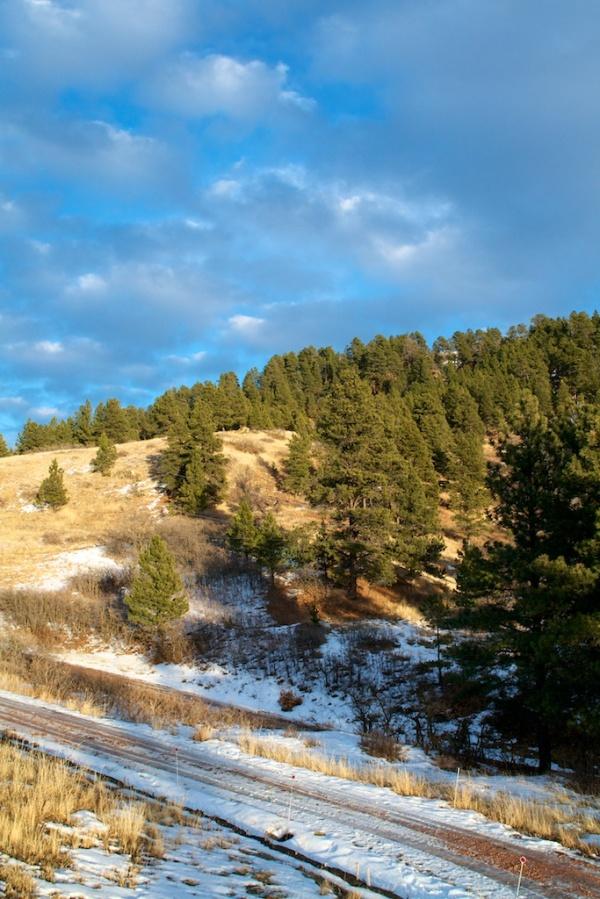 Dirt Road in Setting Sun