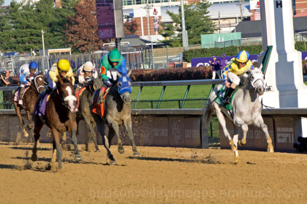 2011 Breeders' Cup Juvenile Stakes