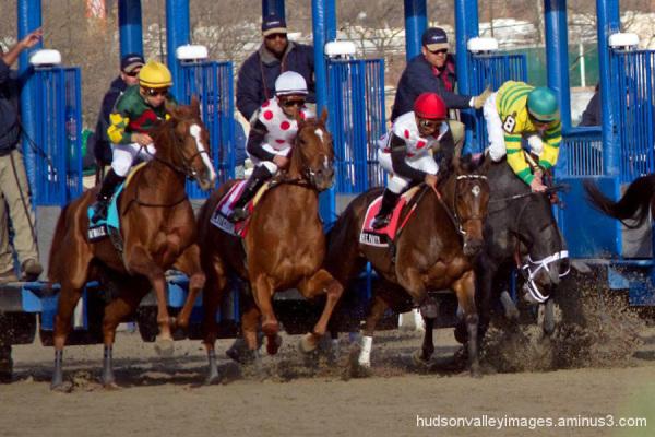 2011 Demoiselle Stakes