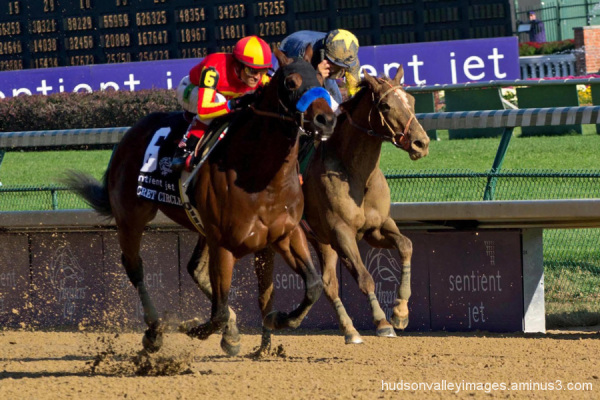 2011 Breeders' Cup Juvenile Sprint Stakes