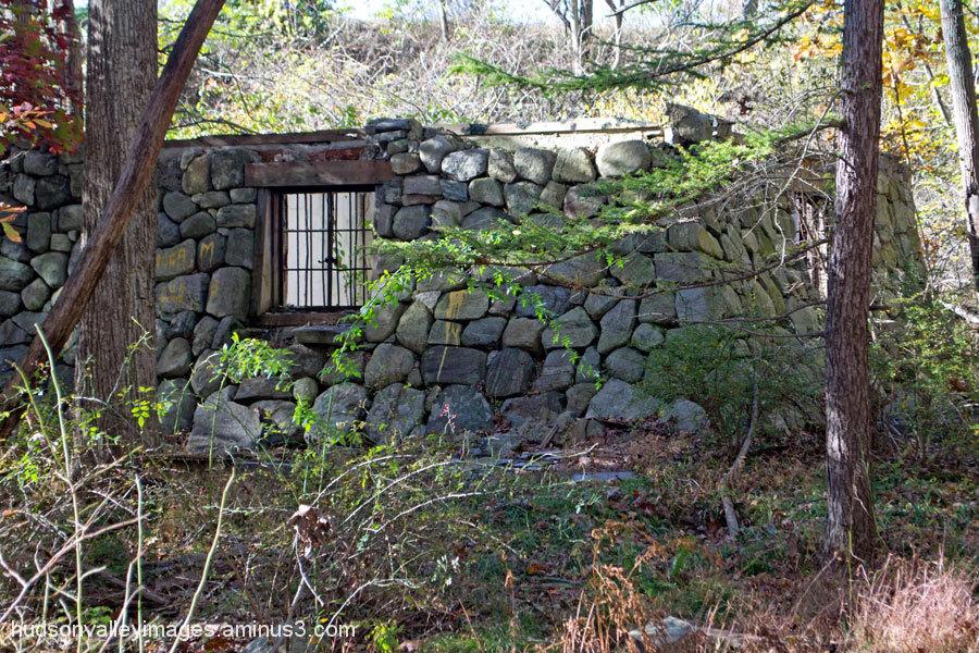 Forgotten Ruins in the Woods
