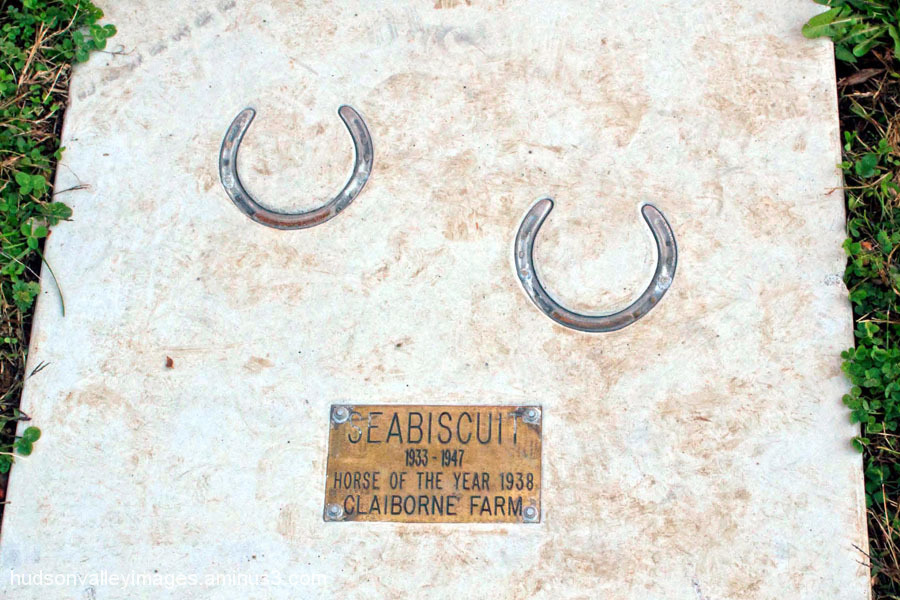 Seabiscuit Horse Shoes