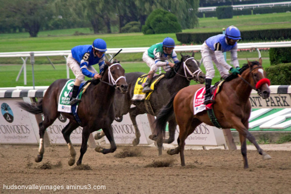 2012 Champagne Stakes