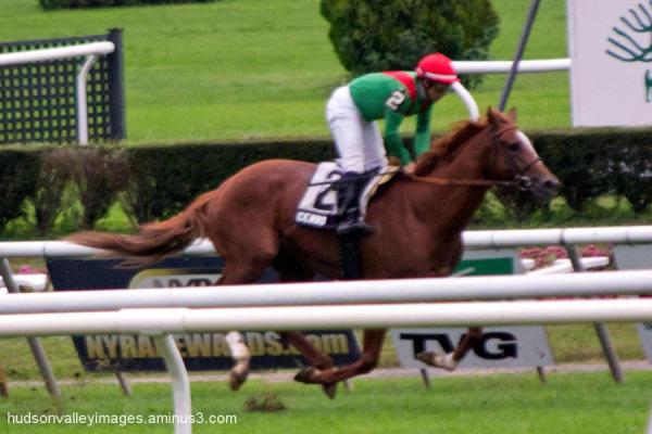 2012 Pilgrim Stakes