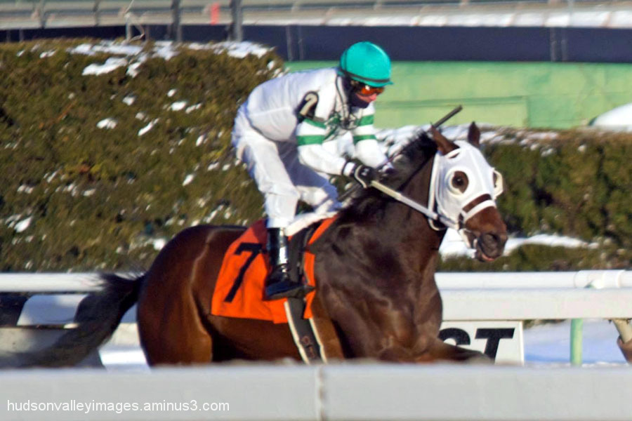 2014 Jerome Stakes - Classic Giacnroll