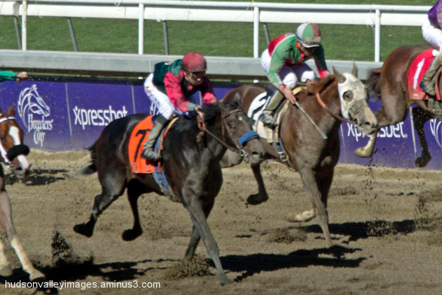 2013 Golden State Juvenile Stakes