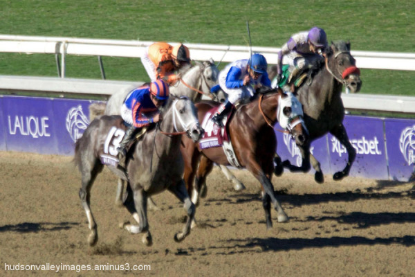 2013 Breeders' Cup Juvenile Stakes