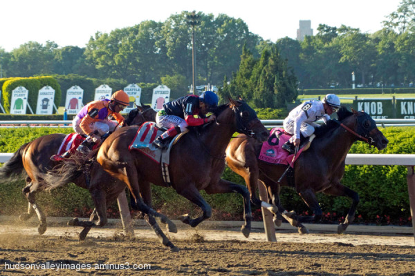 2014 Belmont Stakes - Tonalist