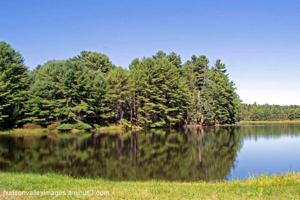 Stephen Crane's Pond
