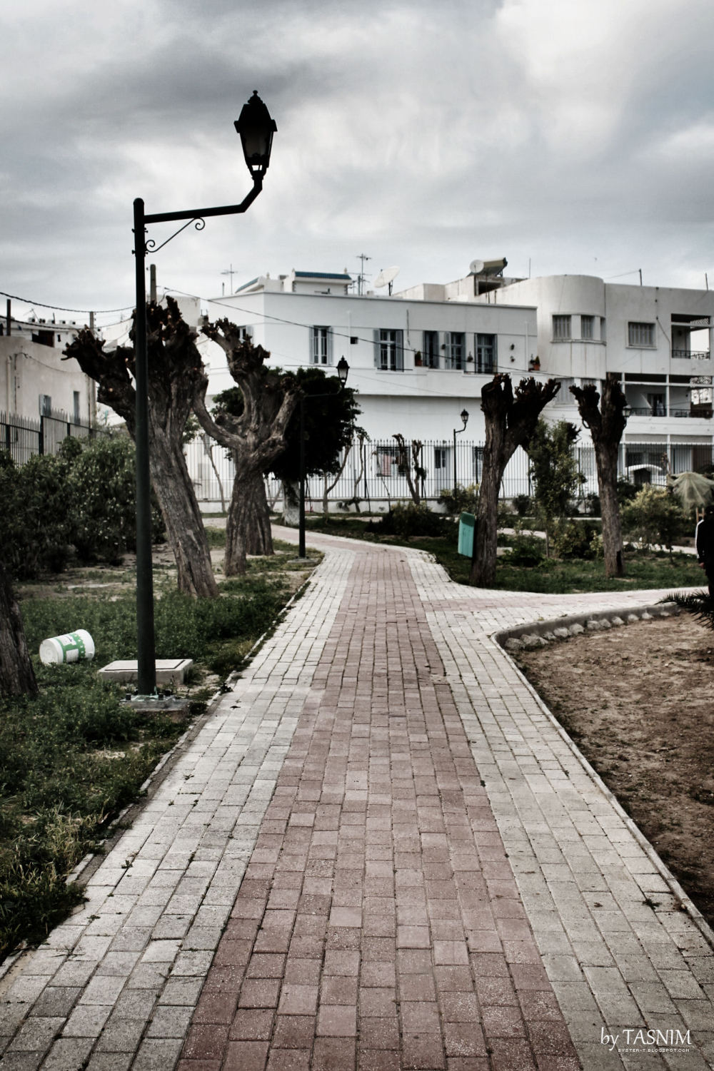 Park in Sousse