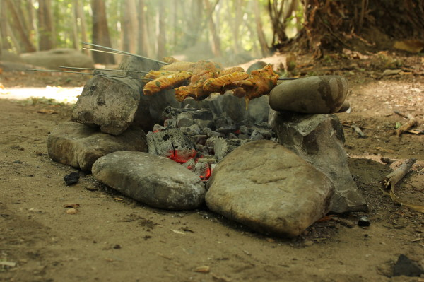 FIRE,PICNIC,HOLIDAY,BARBEQ ,WINGS
