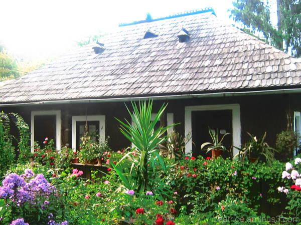 Casa din zona Moldovei