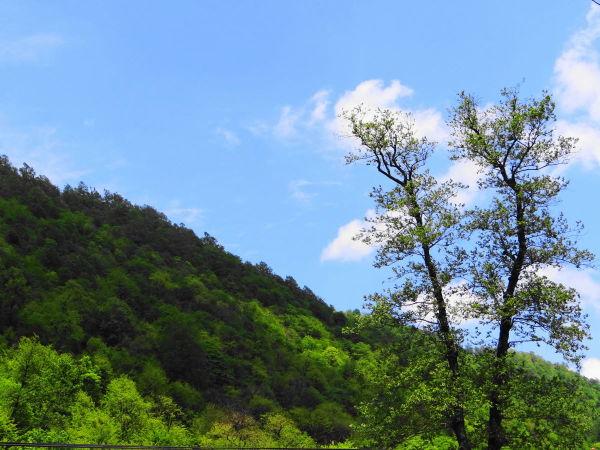 northwest tour iran travel spring
