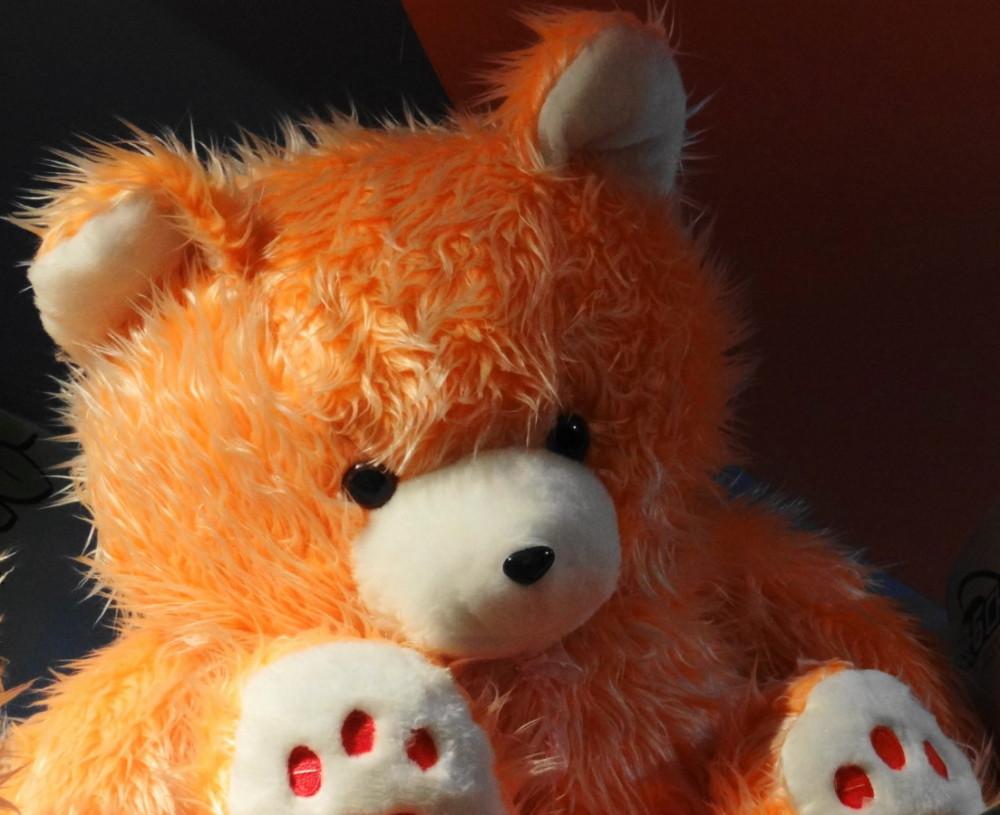 northwest tour iran travel urmia teddy-bear