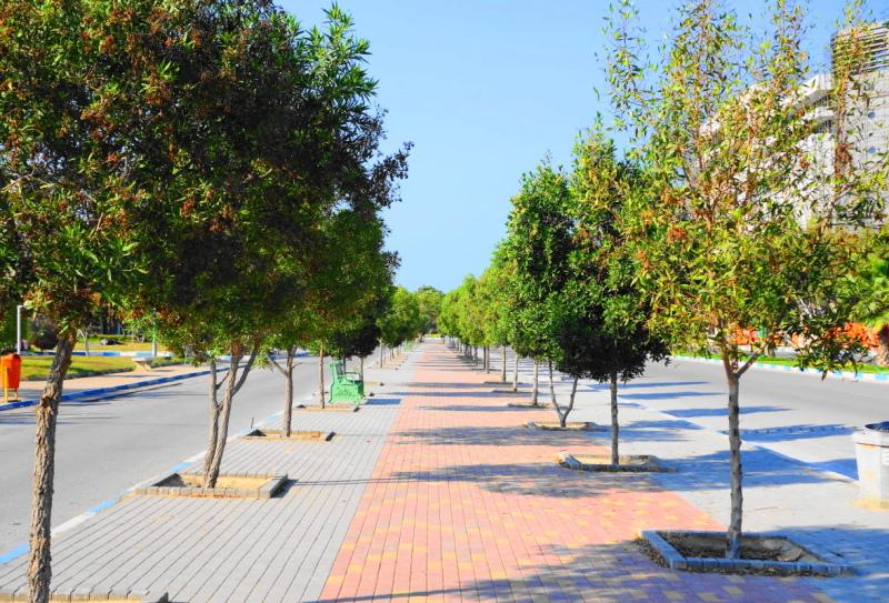 qeshm island persian-gulf coast-park