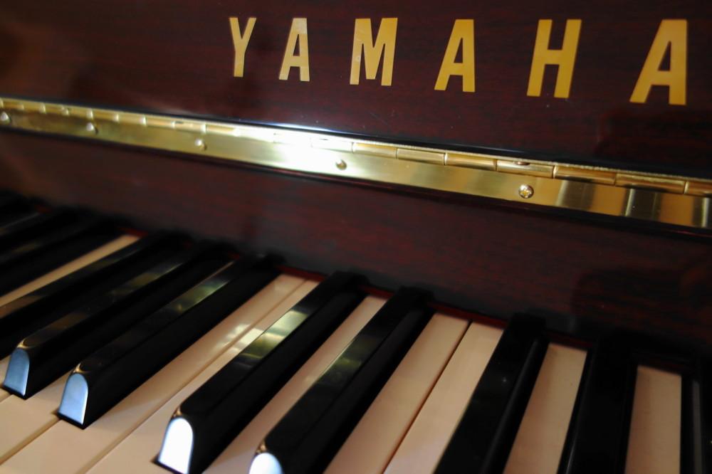 qeshm island persian-gulf piano