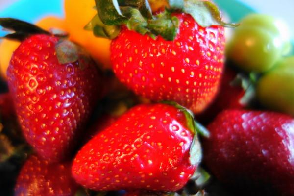 qeshm island persian-gulf strawberry