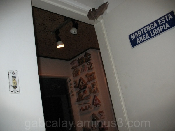 murcielago volando dentro de mi cuarto