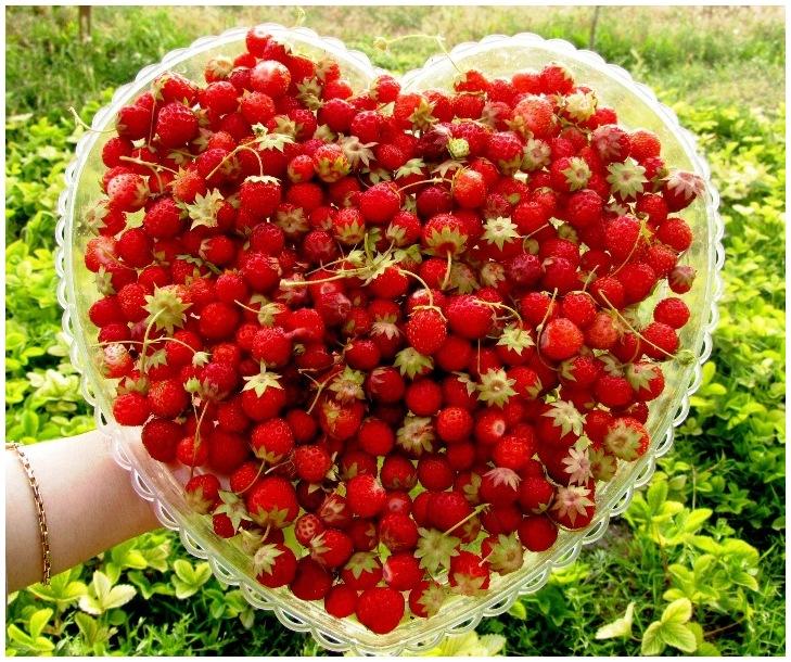 happy valentine! :)