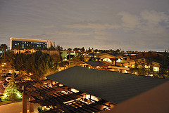 window view from the Grand Californian hotel
