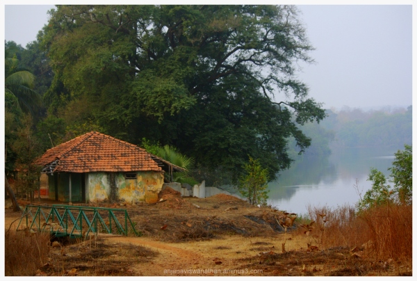 scenic guest house tadoba andhari tiger reserve