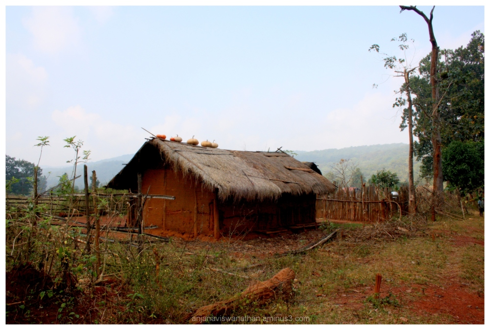 tribal hut odisha