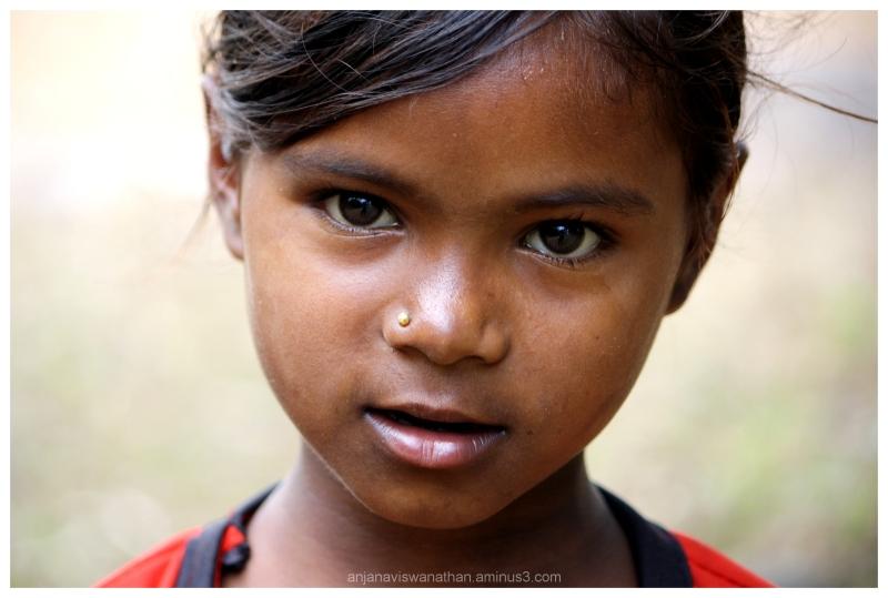 Odisha 100, Tribal Beauty 38 - People  Portrait Photos -9303