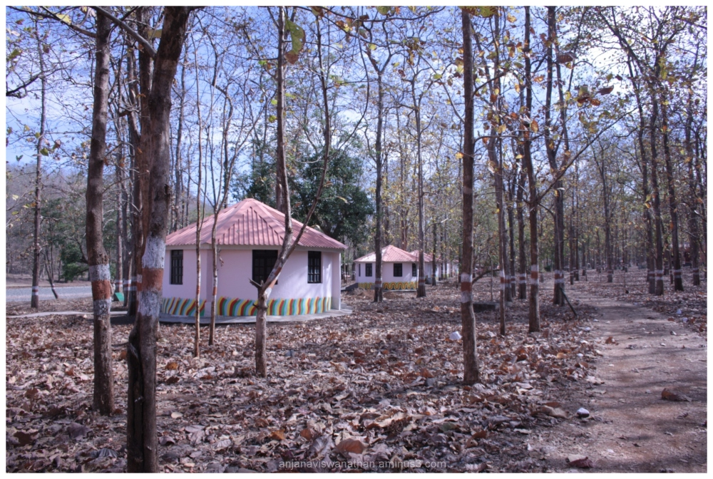landscape nature maharashtra