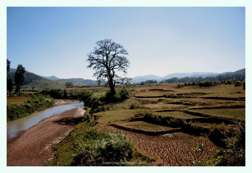 araku valley