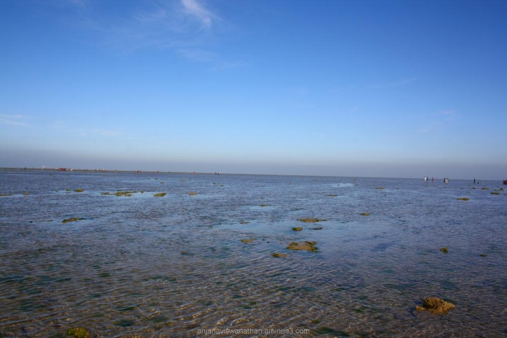 Marine National Park