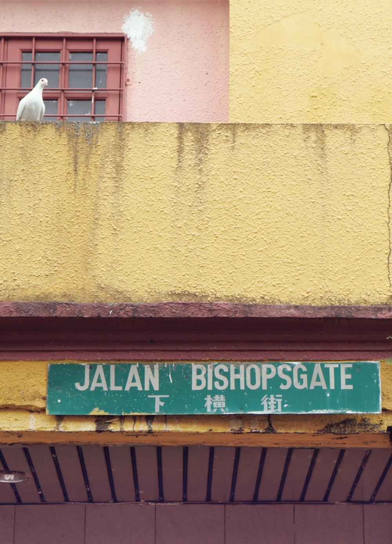 Bishopsgate, Kuching, Sarawak, pigeon, road sign