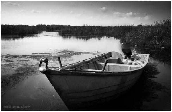 Landscape,Rural,Boat,conceptual