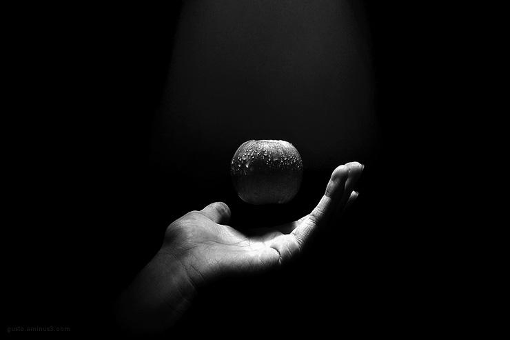 conceptual,rasht photography,hand black and white,