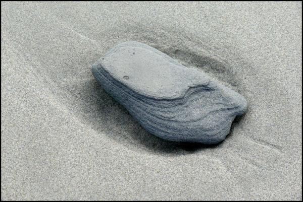 caillou sur la plage