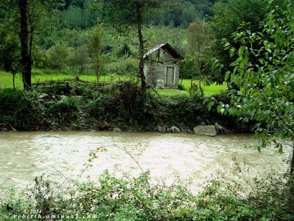 River bank