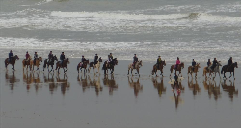 cavaliers et surfeur sur la plage