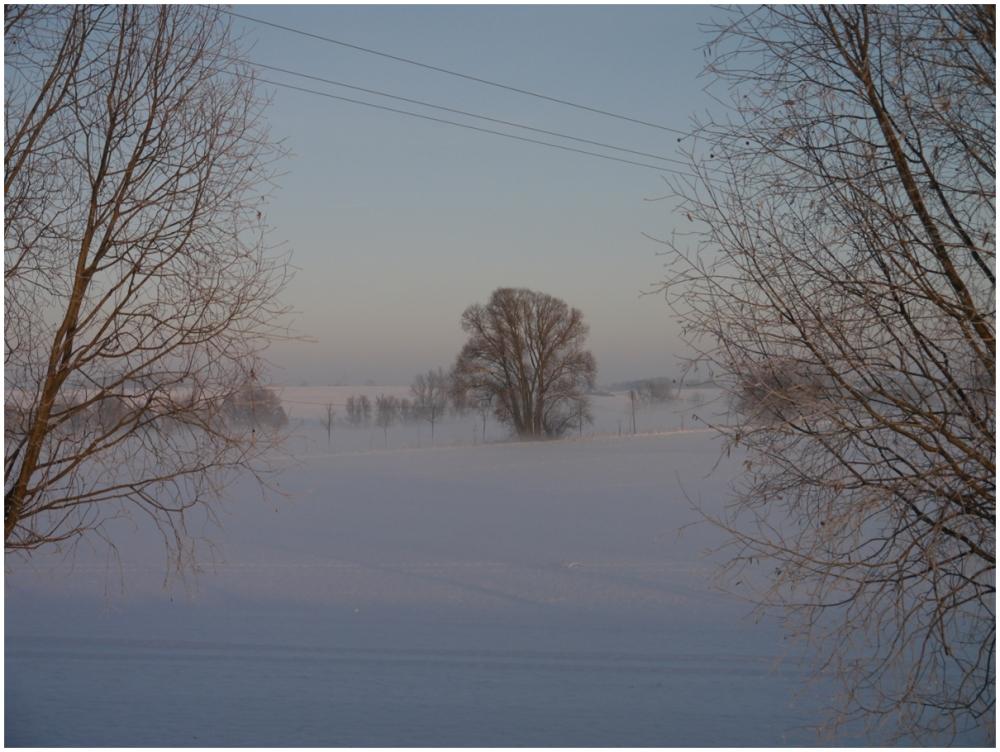 zur erinnerung an den winter