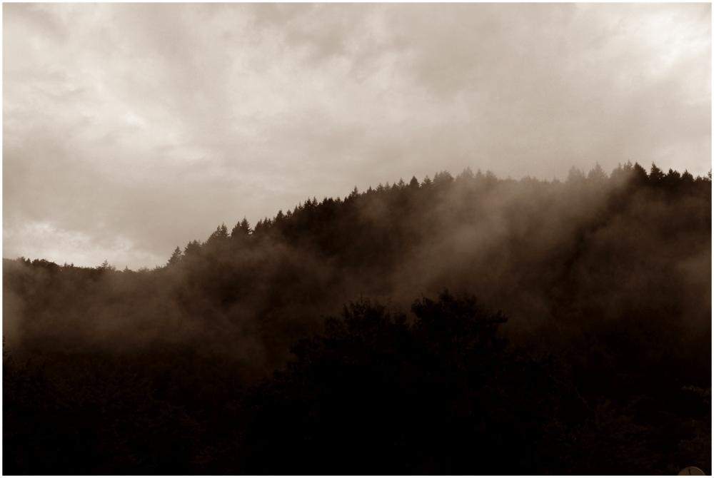 foggy impressions