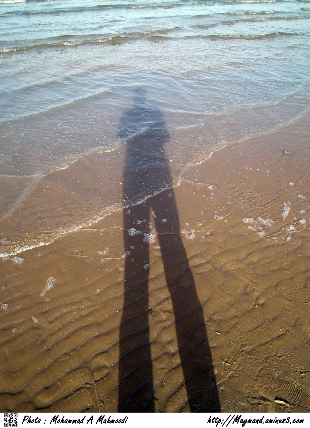 Shadow Wet
