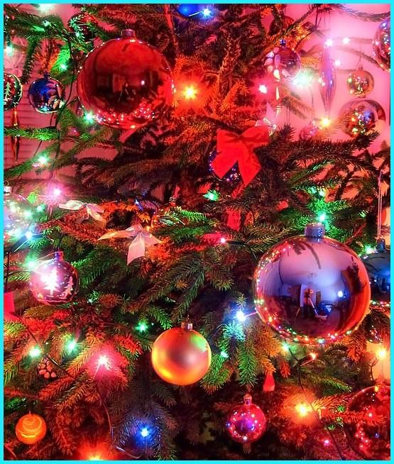 Noël Christmas