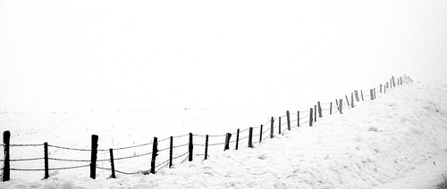 fence disappears into the snowy fog