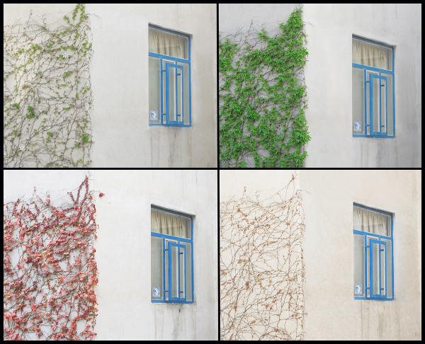 photoblog , amin , maleki , فتوبلاگ , امین , ملکی